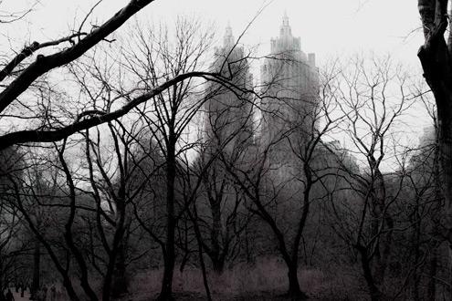 New-York-Design-Agenda-Experimental-Photography  The Experimental Photography of Cynthia Karalla in New York Karalla CP