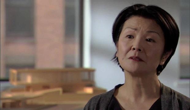 TOP Interior Designer in NYC: Toshiko Mori  Toshiko Mori Innovative and Influential Work coer1