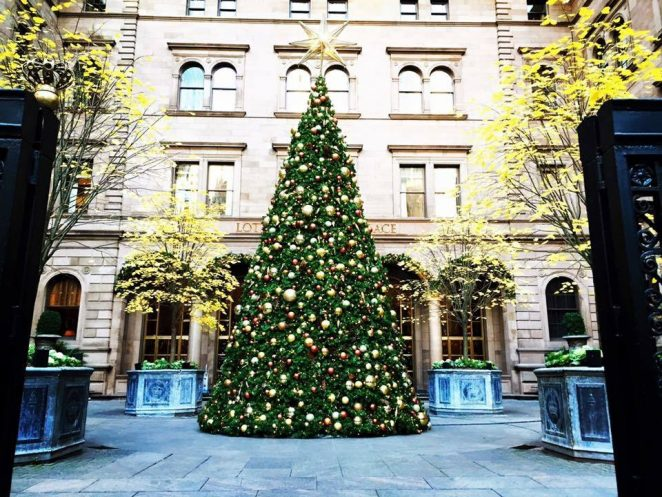 The Best Christmas Hotels in NYC Best Christmas The Best Christmas Hotels in NYC Lotte 1 e1481104233225