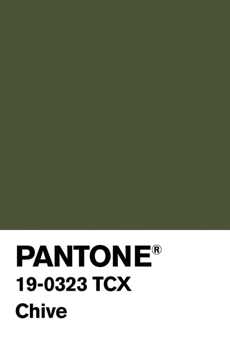 nyc fashion week NYC Fashion Week: Pantone Color Inspirations NYC Fashion Week Pantone Color Inspirations 1