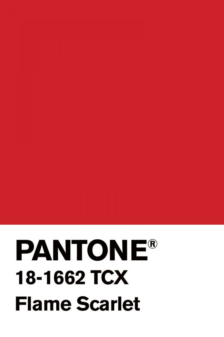 nyc fashion week NYC Fashion Week: Pantone Color Inspirations NYC Fashion Week Pantone Color Inspirations 7